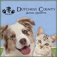 Dutchess County Animal Hospital