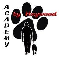 Academy Dog Training by Haywood