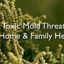 Fort Mill Mold Remediation