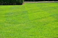 GreenPal Lawn Care of Ft. Lauderdale