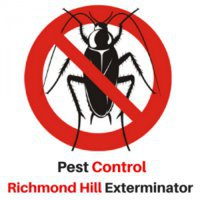 Pest Control Richmond Hill Exterminator