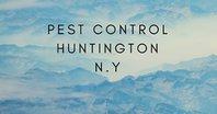 Pest Control Huntngton NY