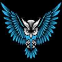 Owl Web Design