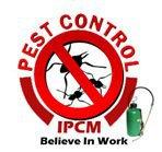 Indo Pest Control Management