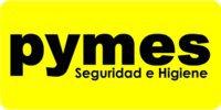seguridad industrial e higiene pymes