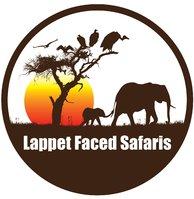 Lappet Faced Safaris