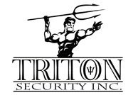Triton Security