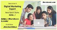 100% Placement,Fee Digital Marketing Training