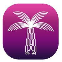 Thrive Digital Solutions-  Web Design Qatar, Branding & Digital Marketing Qatar
