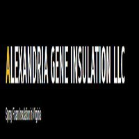 Alexandria Gene Spray Foam Insulation