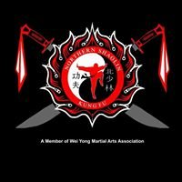 Northern Shaolin School of Kung Fu