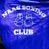 Naas Boxing Club - St David's