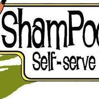 ShamPooches