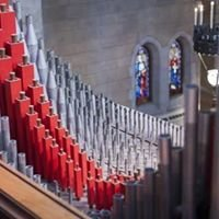 Shepley Concerts at Christ Church Cathedral