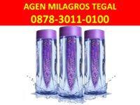 Agen Milagros Tegal WA: 0878-3011-0100 (Tsel)