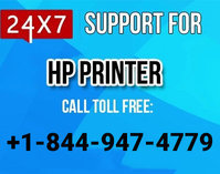 Technical Support for HP Printer - 800 Number for HP Support