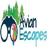 Avian Escapes
