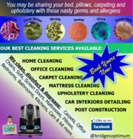 Bridges Optimum Cleaning Solutions