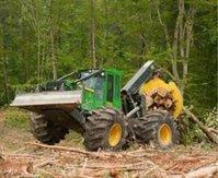 AAA Soggy Bottom Logging