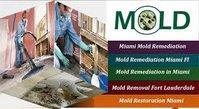 Dade Mold Inspectors