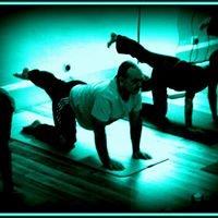 The Body Organic Yoga