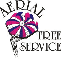 Aerial Tree Service and Yard Maintenance Ltd