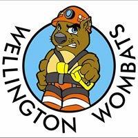 Wellington Wombats