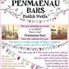Penmaenau Bars