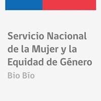 Sernameg Región Biobío