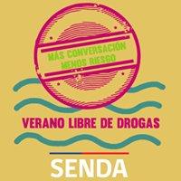SENDA - Prevención y Rehabilitación de Drogas y Alcohol