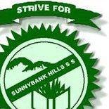 Sunnybank Hills State School