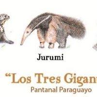 Los Tres Gigantes - Pantanal