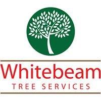 Whitebeam Tree Services