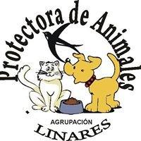 SOCIEDAD PROTECTORA DE ANIMALES DE LINARES, CHILE