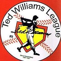 Ted Williams Baseball League