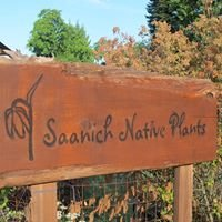 Saanich Native Plants