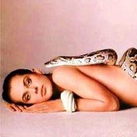 Snakepit at the Henhouse