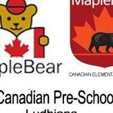 Maple Bear Udham Singh Nagar ludhiana
