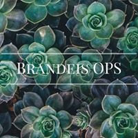 Brandeis University Office of Prevention Services - OPS