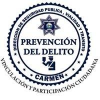 Prevención del Delito Carmen