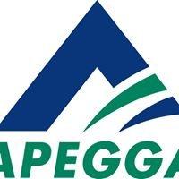 A.P.E.G.G.A.
