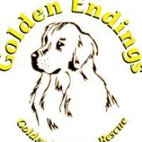 Golden Endings Golden Retriever Rescue