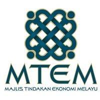 Majlis Tindakan Ekonomi Melayu Bersatu (MTEM)