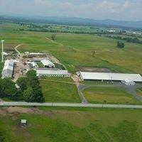 Nea-Tocht Farm