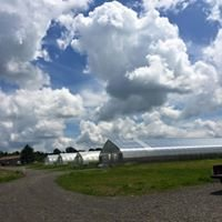 TC3 Farm