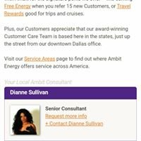 Dianne Sullivan Electricity - Ambit Energy