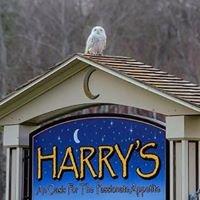 Harry's Cafe VT