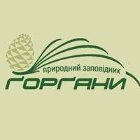 Nature Reserve Gorgany