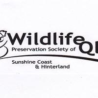 Wildlife Queensland - Sunshine Coast & Hinterland Branch