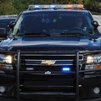Berrien Springs Oronoko Township Police